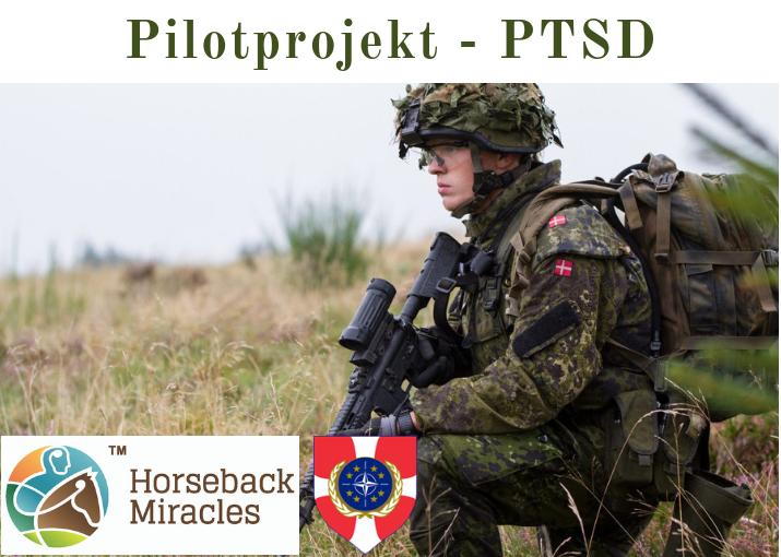 PTSD Pilotprojekt